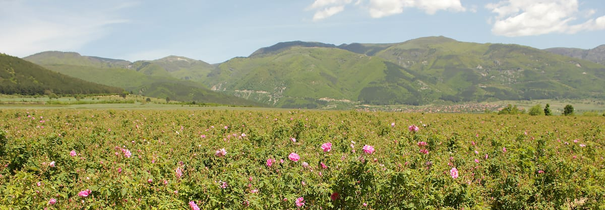 Kazanlak and the Valley of Roses